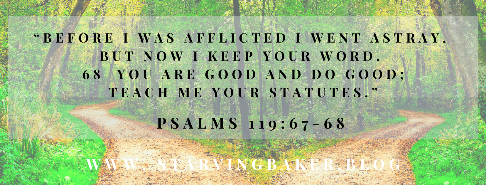 Psalms 119:67-68